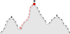 In  the  of a  of organisms is sometimes depicted as if travelling on a . The arrows indicate the preferred flow of a population on the landscape, and the points A, B, and C are local optima. The red ball indicates a population that moves from a very low fitness value to the top of a peak